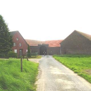 Hochfeld (Pfingsten 2010)