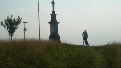 Svinec (Aug. 2011)
