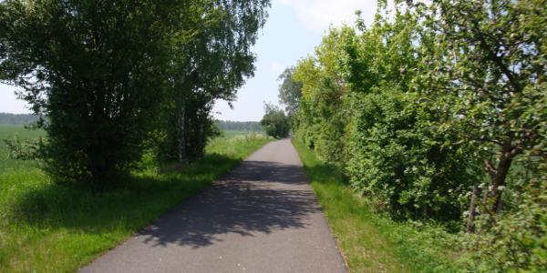 Paradiesische Radwege zwischen Rheinsberg und Neuruppin.