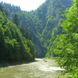 Dunajec-Schlucht