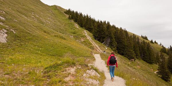 Rundweg zum Gipfelkreuz