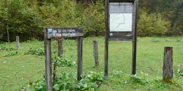 Themenweg Stationen entlang des Weges erzählen von der Waldentwicklung und der Arbeit der ehemaligen Holzknechte und Köhler