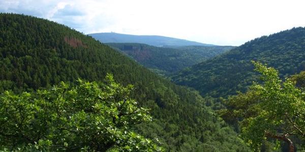 13 Ausblick vom Ilsestein auf das Ilsetal und den Brocken