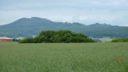 Blick auf den Hohen Dörnberg