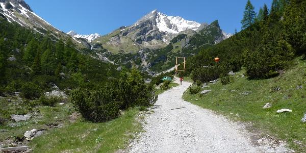 Blick von der Latschenhütte zum Muttekopf