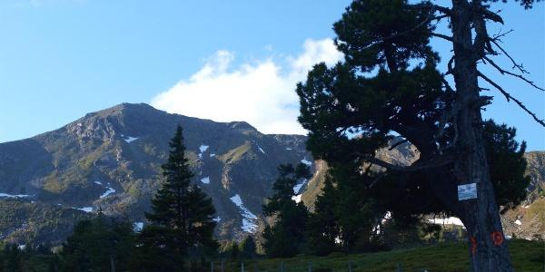 Wegpunkt am Plateau 1800 m mit Amachkogel