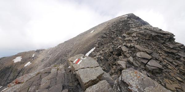 Schwarzhorn (2927 m) - Gipfel