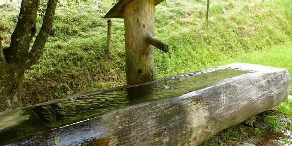 Trinkwasserbrunnen im Pfaffendobel