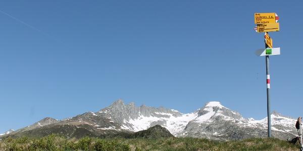 Auf dem Gipfel, Bostg mit Piz Gendusas