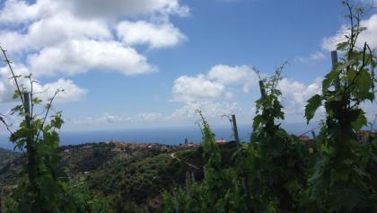 Blick auf die Küste vor San Mauro