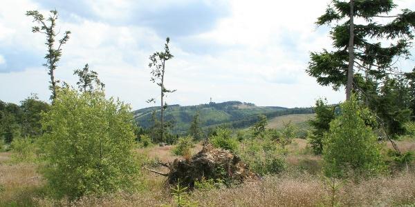 Blicke vom Langenberg