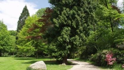 Stadtpark Versmold