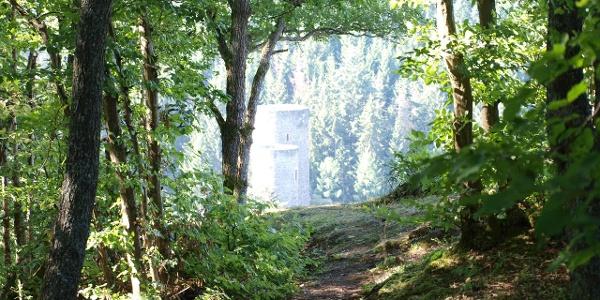 Blick auf die Frauenburg