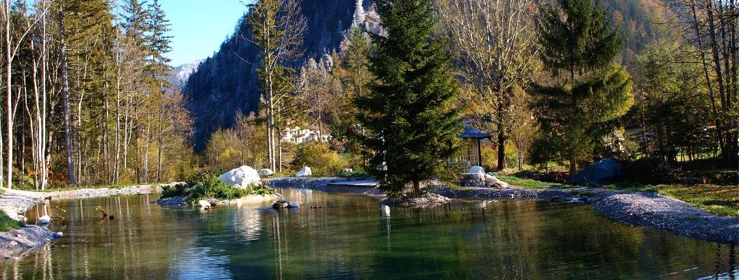 Poppenberg vom Teich 575m bei der Pension Prielkreuz gesehen.