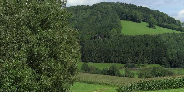Kräftiges Grün und stetig sich ändernde Landschaft.