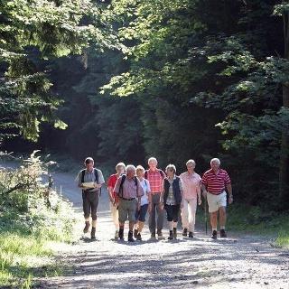 Geführte Wanderung in Bad Driburg