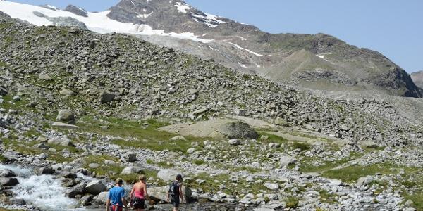 Die Wanderung auf dem Arthur-Hartdegen-Weg (Blick zum Schneebigen Nock) ist zu Recht ein Höhenweg-Klassiker.