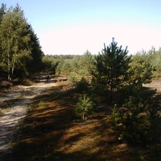 Naturpark Kraupa.