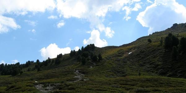 Ein wunderschöner Steig schlängelt sich durch die Almrosenmatten und führt unweigerlich zum Gipfel.
