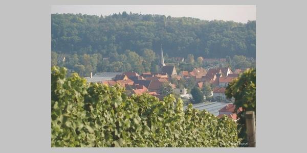 Pfaffenberg bei Segnitz.