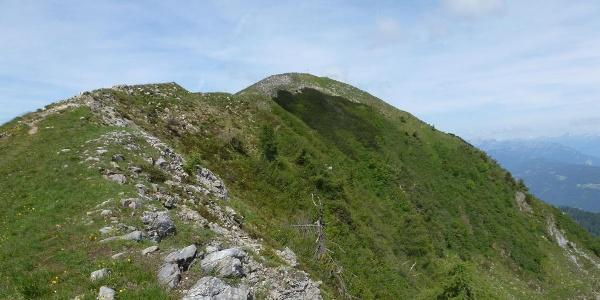 Blick auf den Poludnig-Gipfel