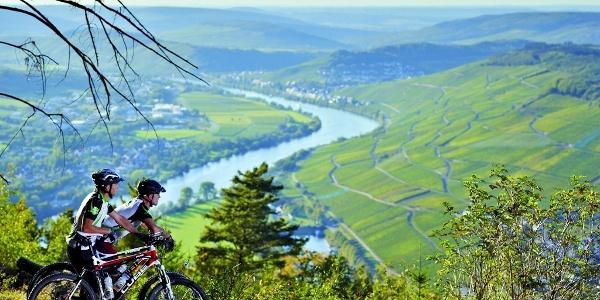 Mountainbiken in der Moselregion