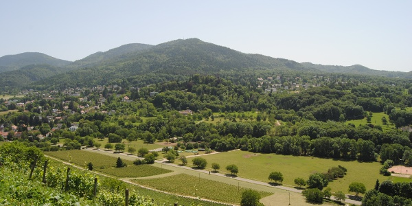 Blauen Blick von den Weinreben des Römerberges in Badenweiler