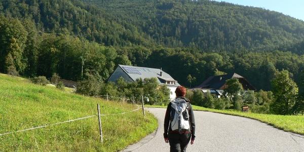 Über wenig befahrene Straßen Richtung Schwarzensee, links oben der Sommeraustein