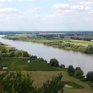 Die Elbe bei Km 530