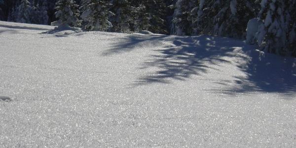 Über Nacht haben sich auf dem Schnee Eiskristalle gebildet.