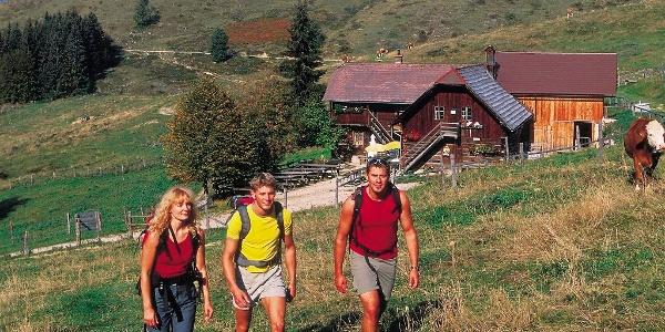 Anlaufalm im Reichraminger Hintergebirge