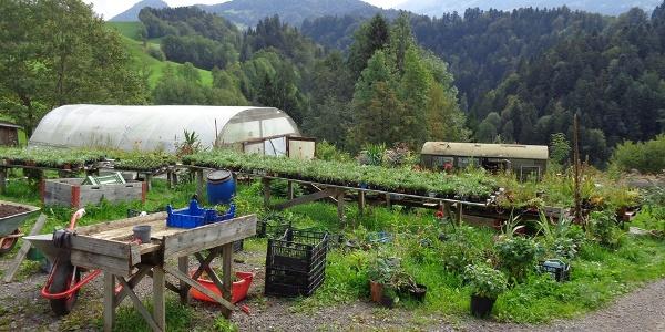 Quelltuffrunde - Garten Nenning