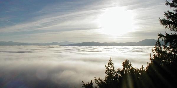 Nebel und Meer im Naturpark Hohe Wand