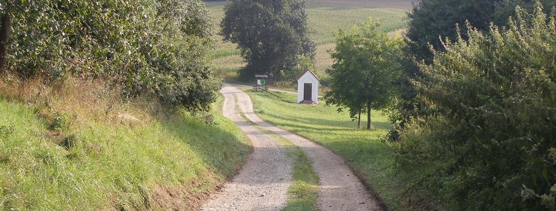 Einen leicht abschüssigen Weg geht es hinunter zur Bruder-Konrad-Kapelle.