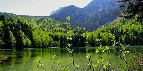 Frillensee: Kältester See Mitteleuropas