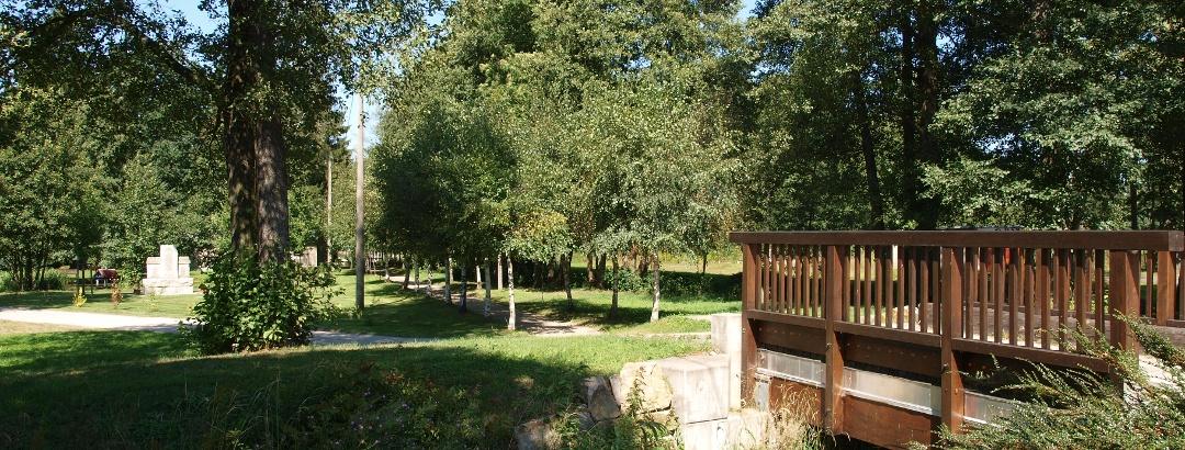 An der Teichanlage Schönau bei Falkenstein
