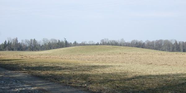 Der größte Hügel der Grabhügelgruppe ist nur mit geübtem Auge als solcher zu erkennen.