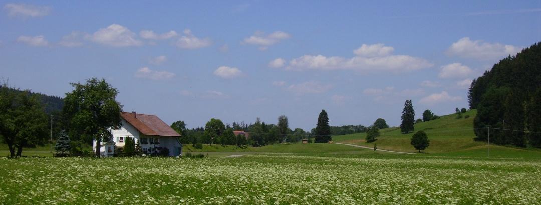 Allgäuer Höfe prägen das Bild im Umland von Isny.