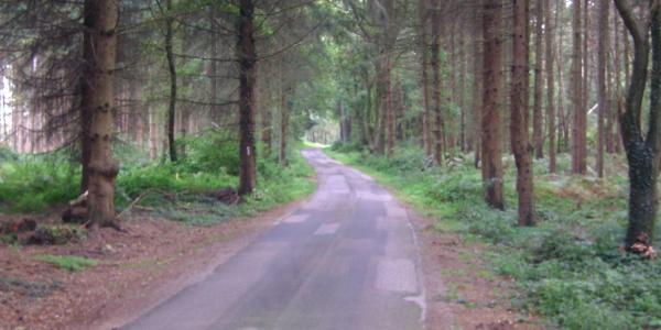 Zur Bleckhorst Streckenverlauf