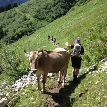 Weg zur Lindauer Hütte