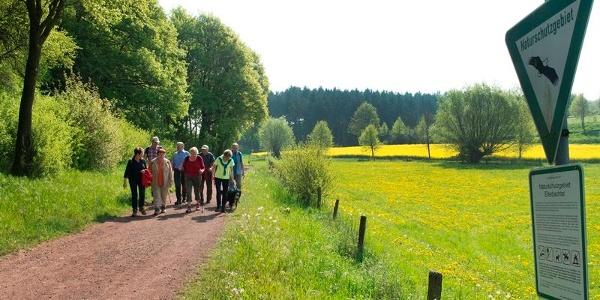 Ellerbachtal bei Paderborn-Dahl