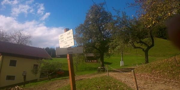 Abzweigung in Rüben nach Stollwitz