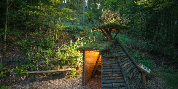 Der Waldarbeiter- und Försterpfad Latrop