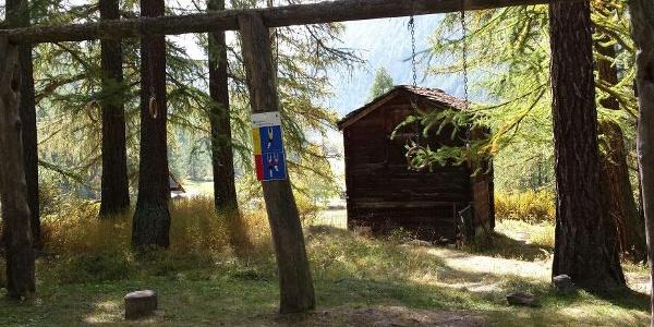 Vita Parcours im Waldgebiet nahe Randa