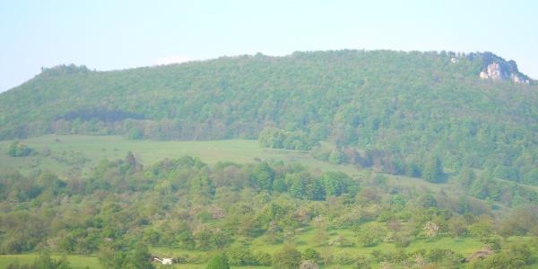 Ausblick auf den Teckberg mit der Ruine Teck (links) und dem Gelben Felsen (rechts).