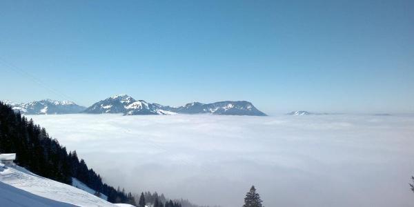 Unterhalb der Grünten-Felsen, links nochmal die Kalkhöf-Alpe, hinten das Immenstädter Horn