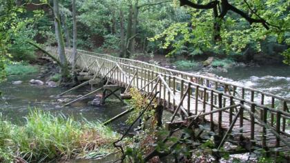 Diese Holzbrücke führt ans andere Warnowufer.