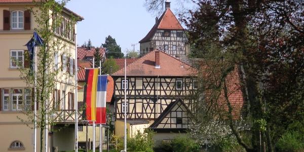 Blick aus dem Schlosspark auf den 5eckigen Turm