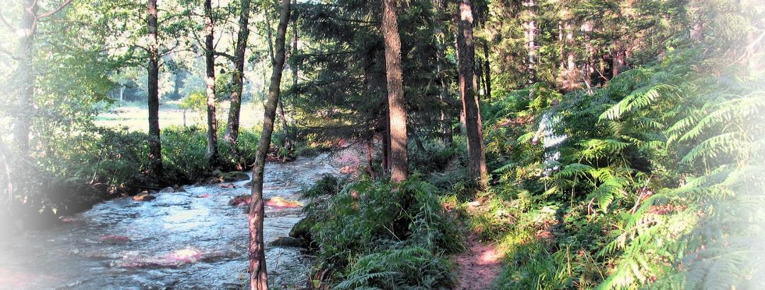 """Eyachtal - auf dem """"Wasserweg"""""""