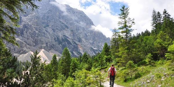 Der Zustieg durch das Reintal - Eine herrliche Kulisse auf einem bequemen Weg